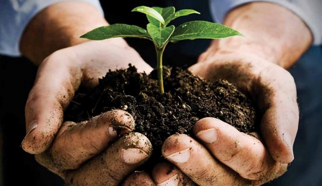 Environmental Impact Assessment Plays A Significant Role In Keeping The Environment Safe