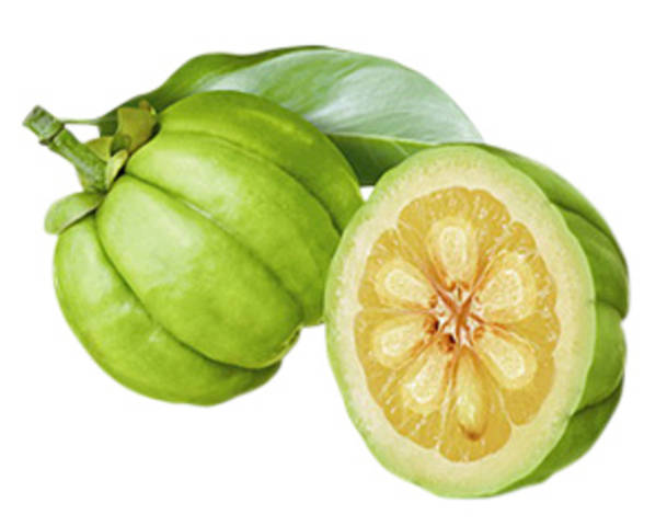 Is It Beneficial To Use Garcinia Cambogia To Get Rid Of Weight