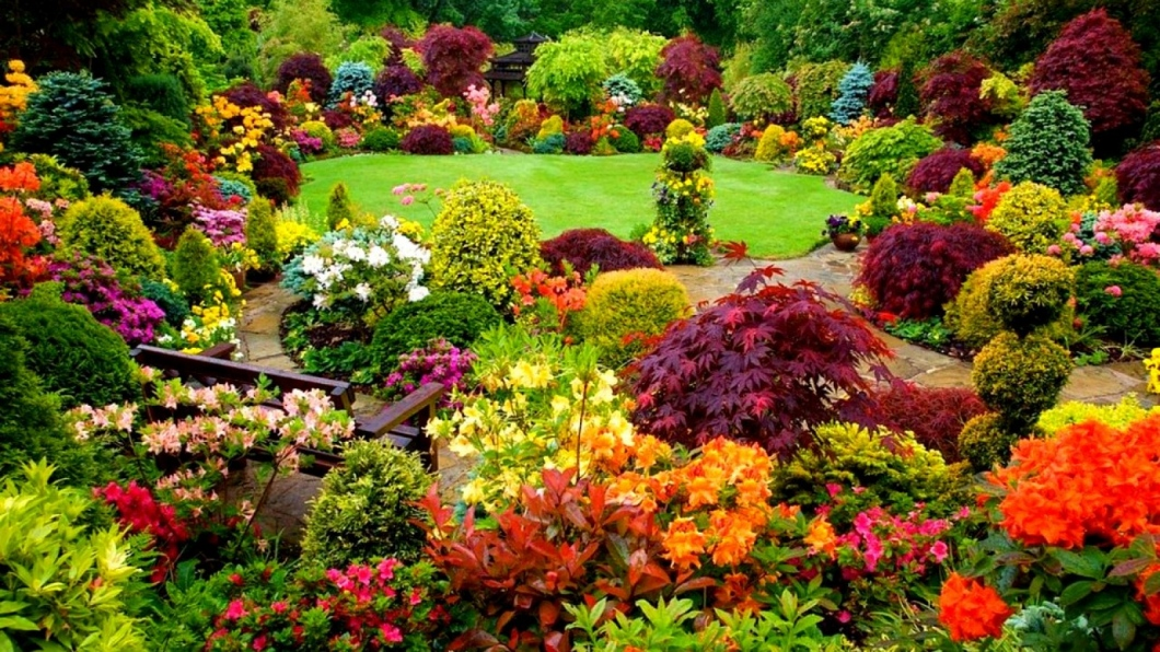 Choosing The Ideal Color For Your Garden