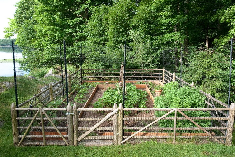 How To Get The Best Fencing Panels At Cheapest Rates For Your Garden?