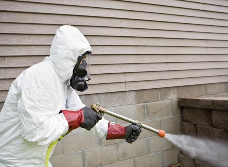 World Class Pest Control Services In Edmonton