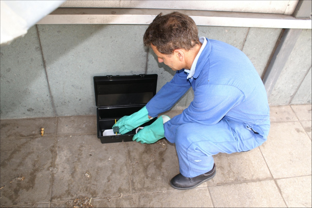 Extirpate Pests With An Unfeigned Pest Control Agency