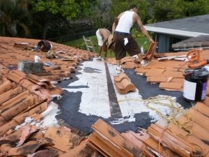 Roof Cleaning - Let The Specialists Do It For You