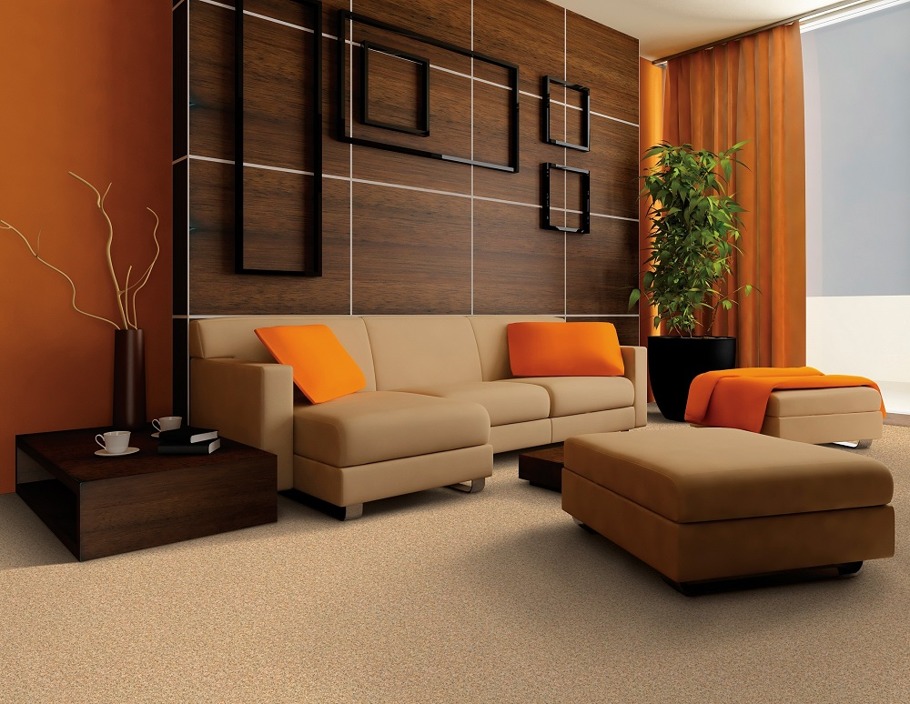 Questions To Ask From A Professional Carpet Cleaning Company