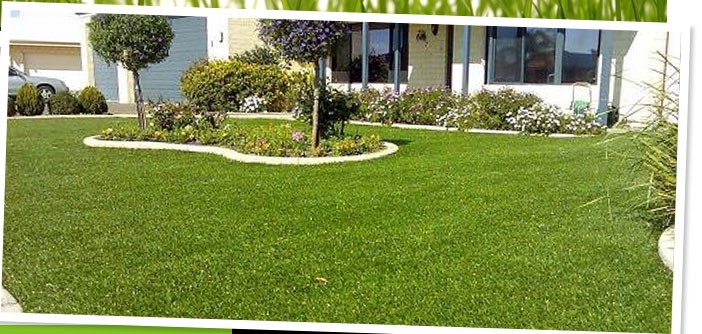 Artificial Lawns: Aesthetic But Not Toilsome