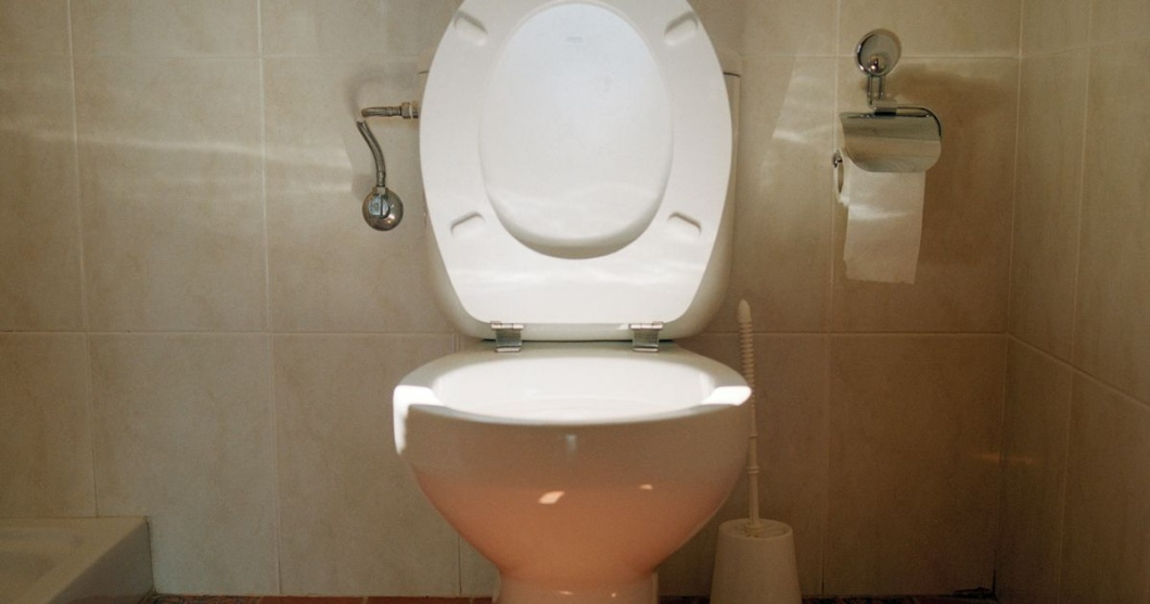 The Toilet Keeper-Who Knows What Works For Best Toilet