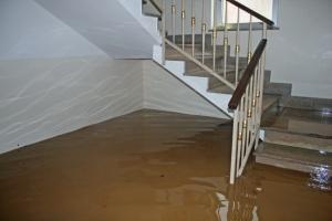 Water Damage Restoration – Why You Shouldn't Let Water Damage Rest