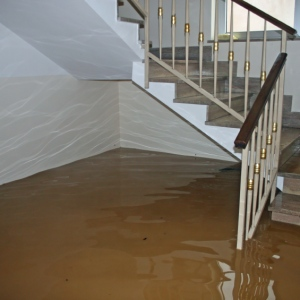 Water Damage Restoration – Why You Shouldn't Let Water Damage Rest