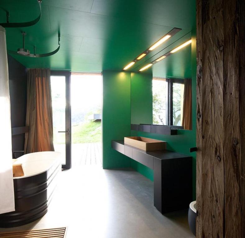 bathroom decoration ideas of modern small bathroom using dark green wall paint and black appliances combination
