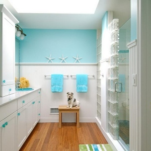 bathroom remodeling ideas with wall blue colors idea