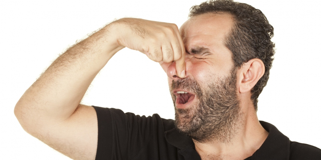 Is Your House Gives Horrible Smell Regularly