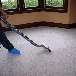 Reduce Improvement Costs by Professionally Cleaning Carpets