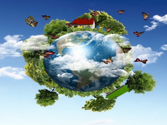 Benefits Of ISO 14001 Environmental Management System In Queensland
