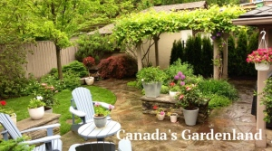 landscaping company Vaughan