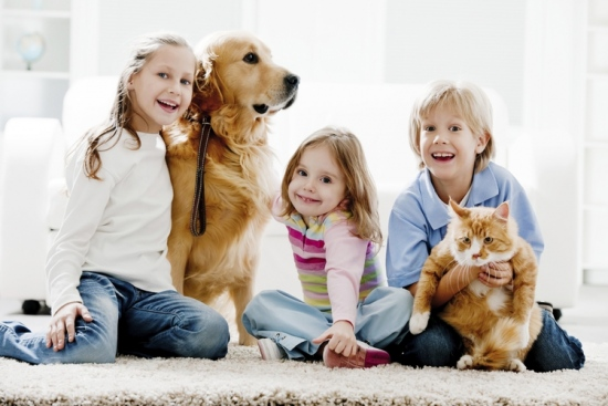 Protect Your Family, Pets and Carpet With Green Cleaners