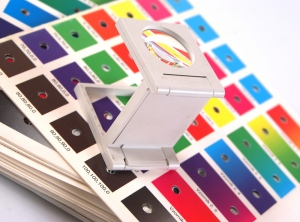 Get Your Flyers Designed With The Expert 55printer
