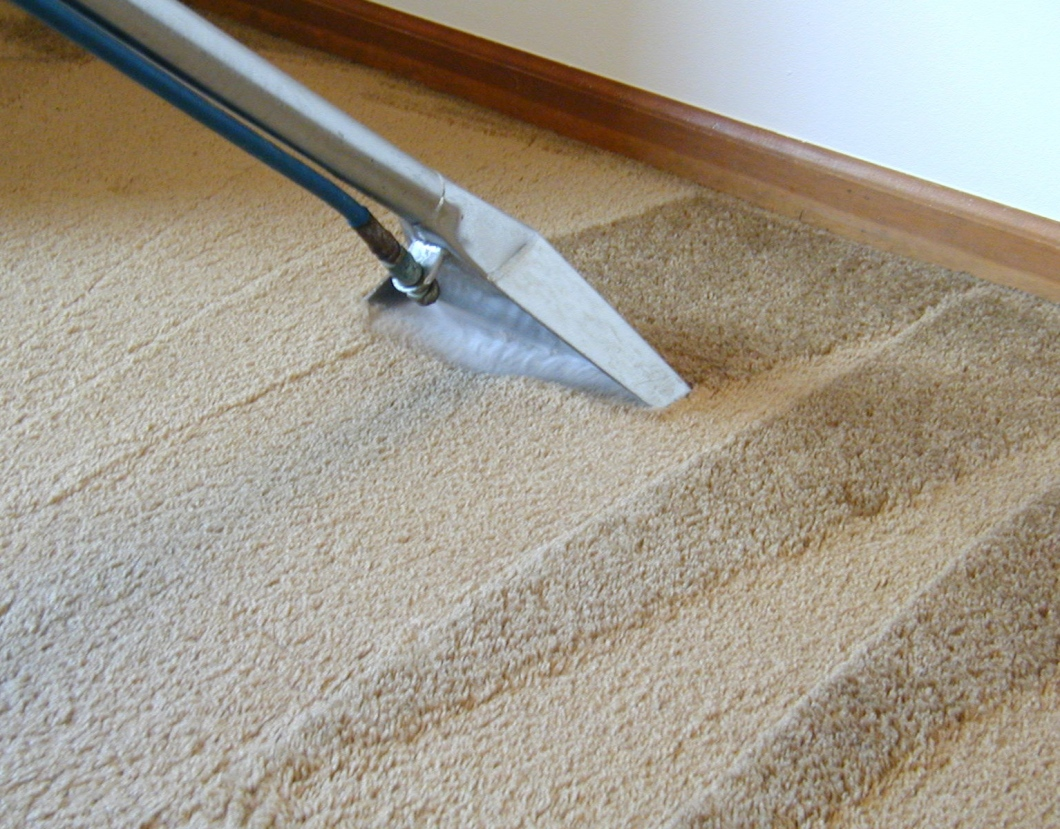 Why It Is Recommended To Hire A Professional Cleaning Agency For Carpets Cleaning