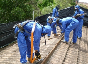 How To Safely Remove An Asbestos Roof
