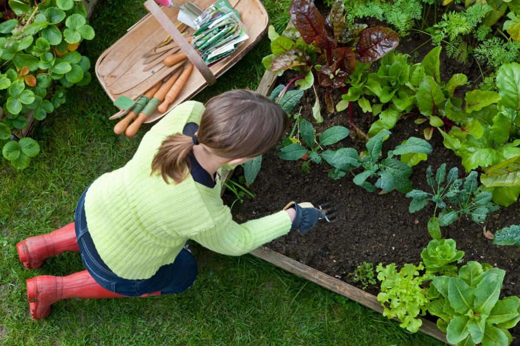 Why You Need To Practice Gardening Often