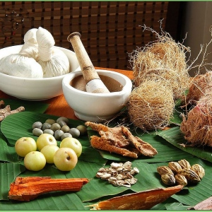 Ayurveda- A Brief Insight Into The Healing System