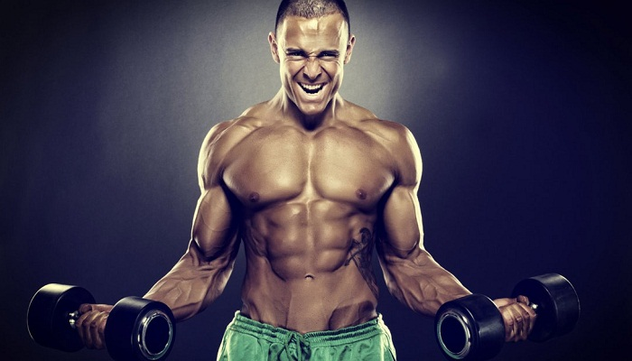 7 Essential Tips For Muscle Gain