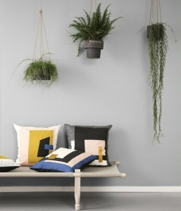 Indoor Hanging Planters An Essential, Introductory Guide