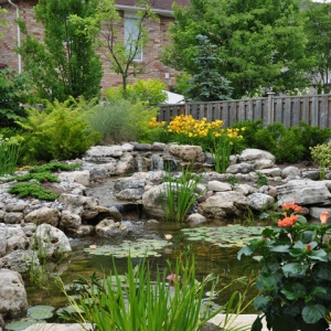 A Guide To Creating The Perfect Garden