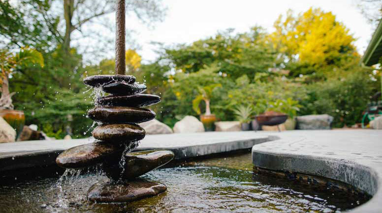 Water Features in Your Backyard