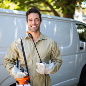 Methods To Prevent Pest Infestation In Your Office